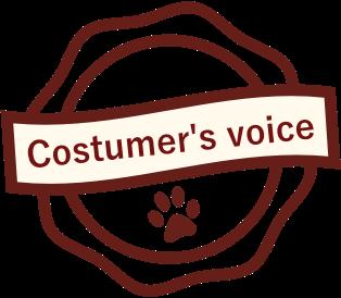 Costumer's voice